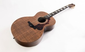 Blackbird Ekoa El Capitan guitar